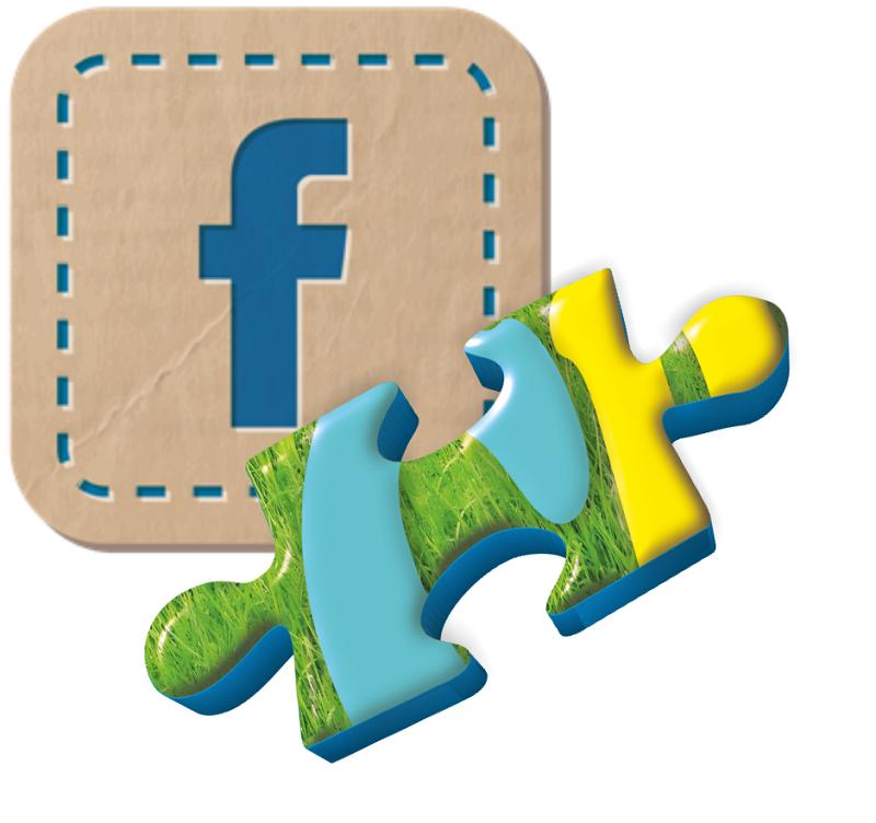 tasto facebook crescere 1